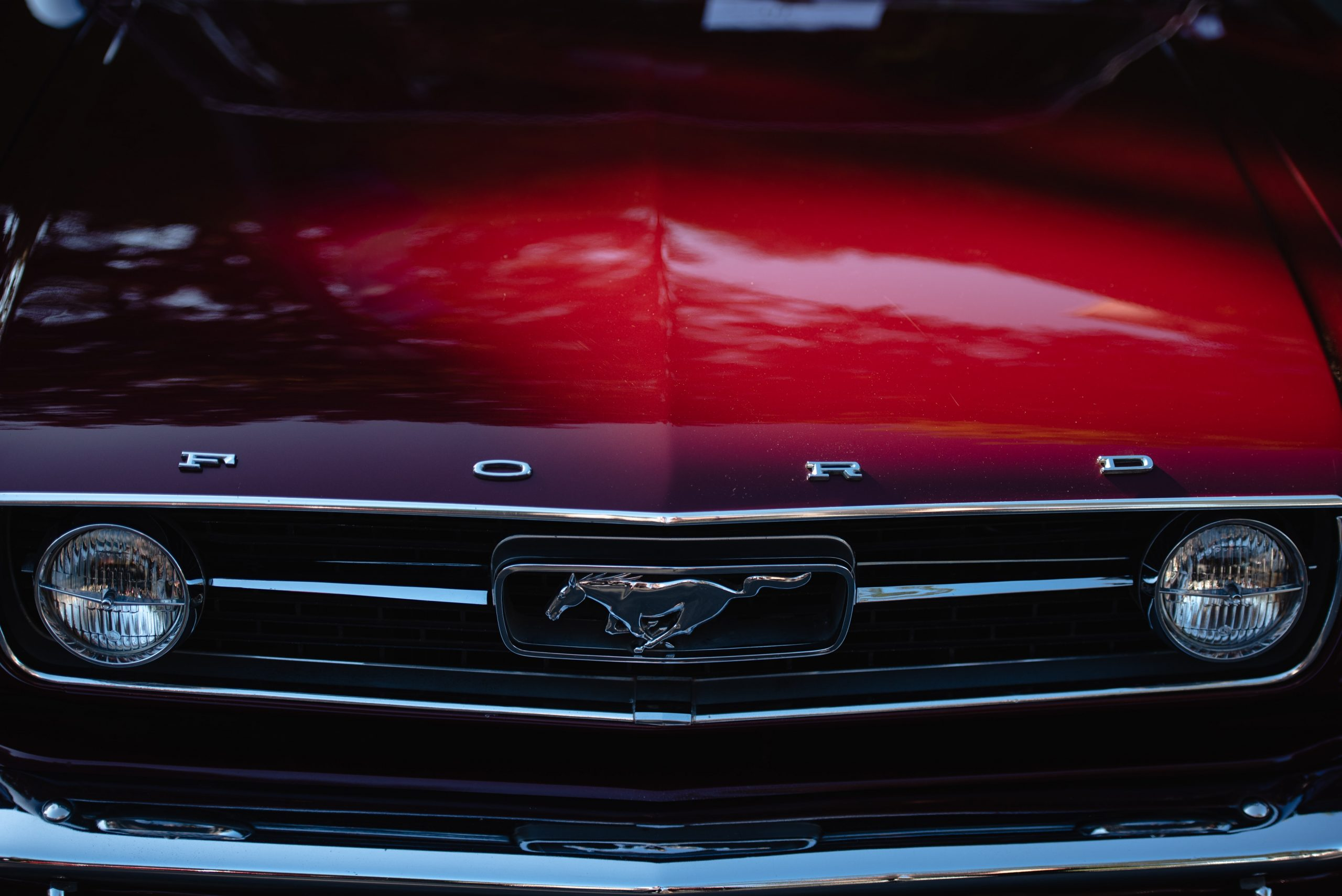 Ford Has Big Plans for Their Future